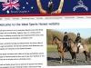 Ideal Sports Horses